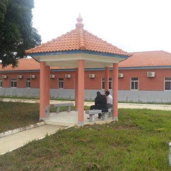 CPNieto Angola.lab.06