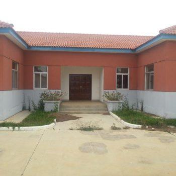 CPNieto Angola.lab.07